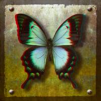 D-AnaglyphRadiant-Swallowtail-Butterfly_art