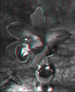 flower_a