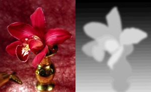 flower_and_depth