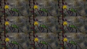 Рис. 14. 9 кадров получены путем рендеринга по двум кадрам стереопары